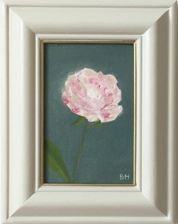 Bloom Five_Bess Harding_The Art Buyer Gallery