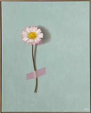 Stolen Stem XXX_Bess Harding_The Art Buyer Gallery